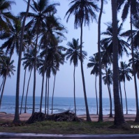 Tree lined promenade linking Cape Coast to Elmina, two historic cities in present-day Ghana.